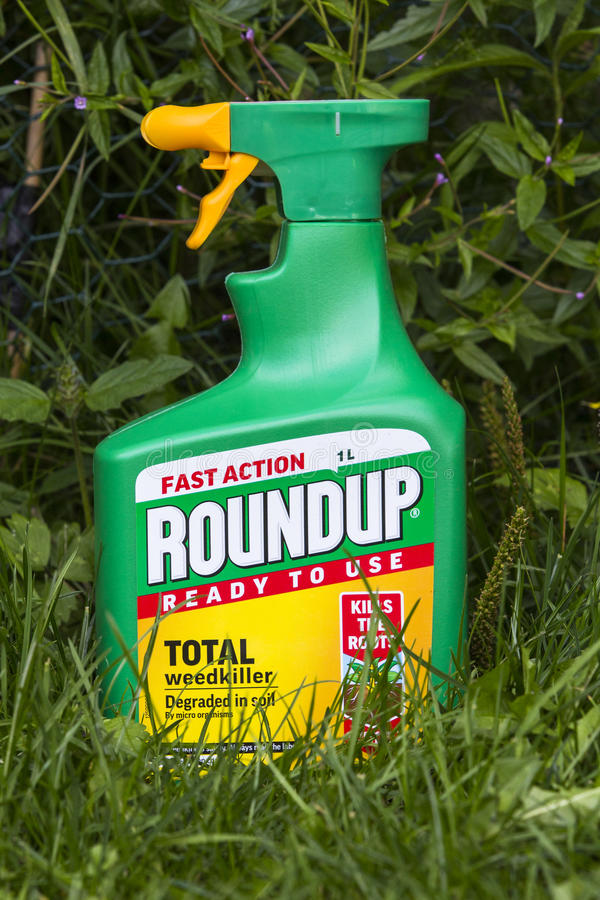 Roundup weedkiller with Glyphosphate. LEEDS, UK - 15 AUGUST 2017. ROUNDUP FAST ACTION WEEDKILLER WITH GLYPHOSPHATE BY MONSANTO stock photos