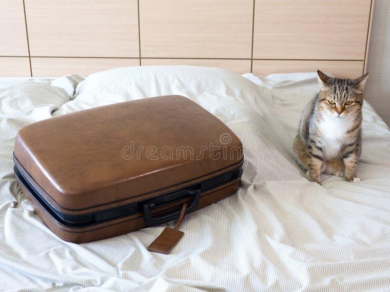 Roupa do bloco da mala de viagem da bagagem pronta ao curso do fim de semana das férias foto de stock