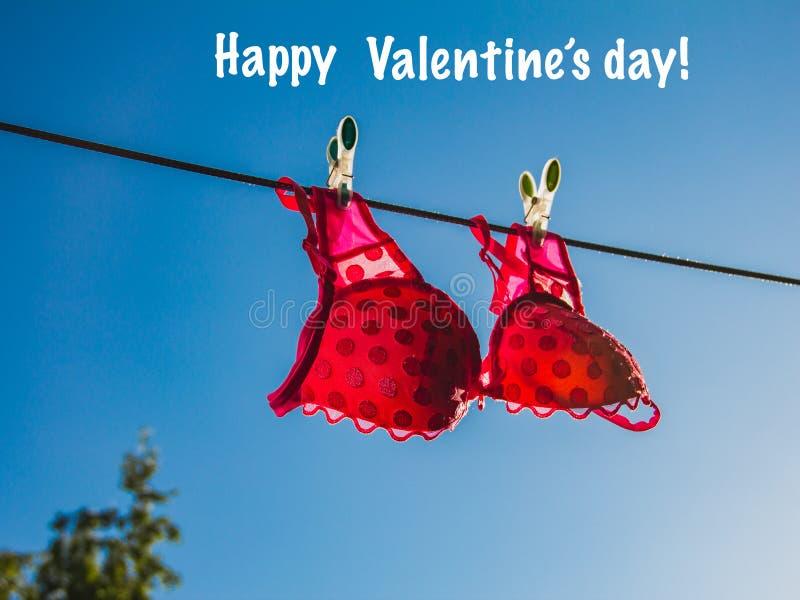 Roupa interior cor-de-rosa na corda no céu azul aberto Conceito feliz do amor do dia de Valentim foto de stock