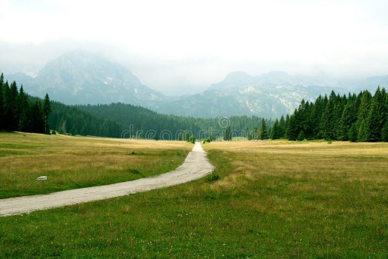 Route à la nature photos stock