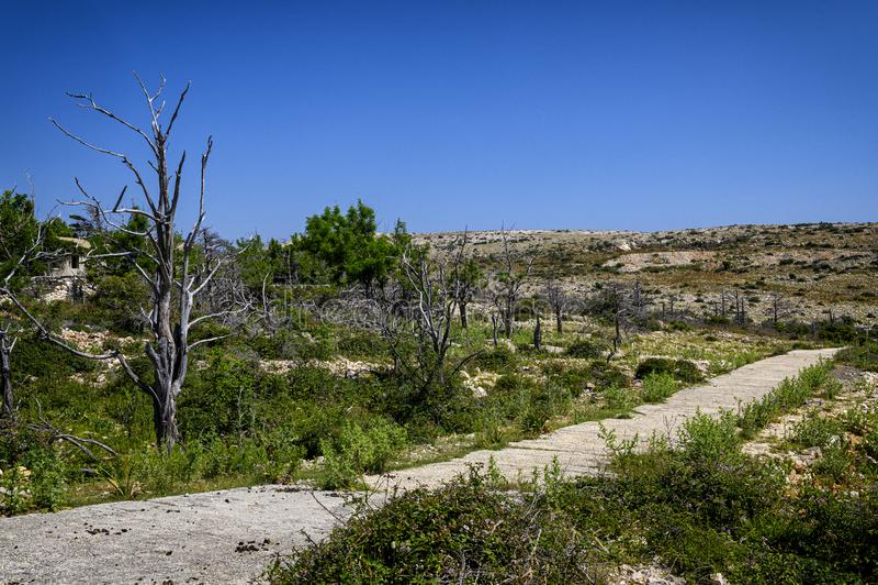 Route abandonnée sur l'otok de Goli, Croatie image stock