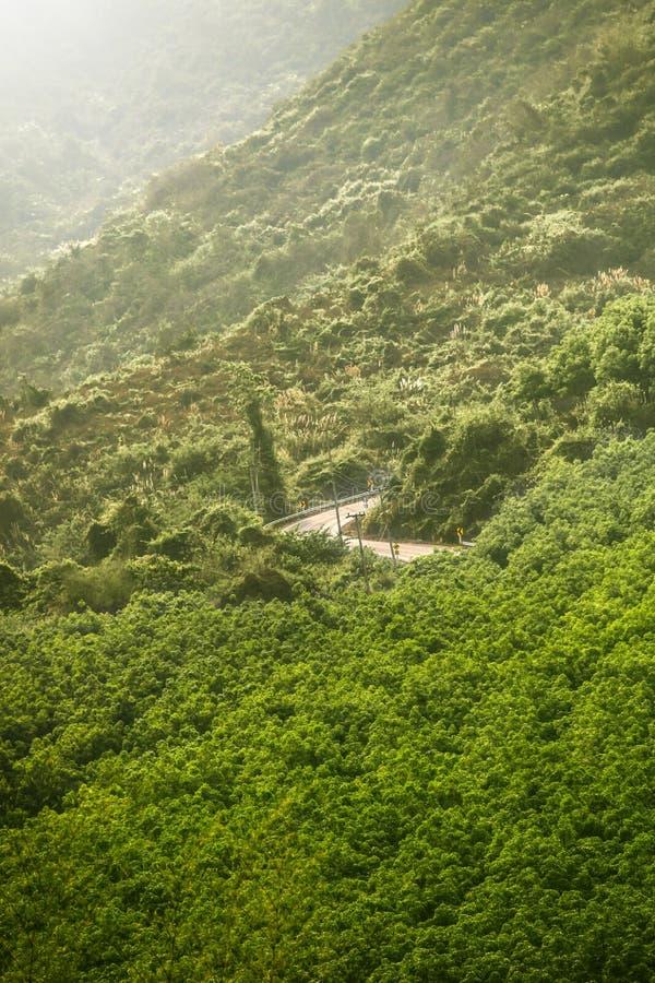 Route Ain d'arbre, Thaïlande images libres de droits