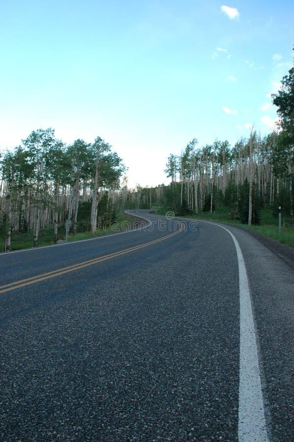 Route alpestre photo libre de droits