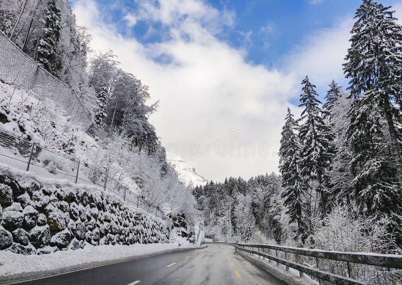 route alpestre de montagne photographie stock