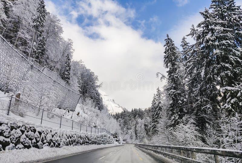 route alpestre de montagne images stock