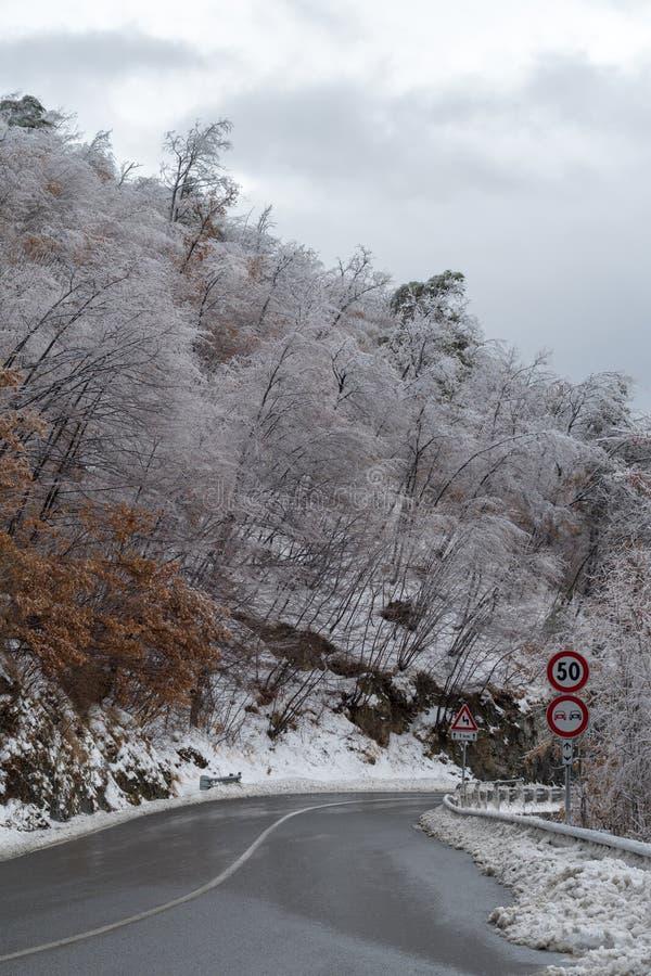 Route après la tempête de pluie verglaçante image libre de droits