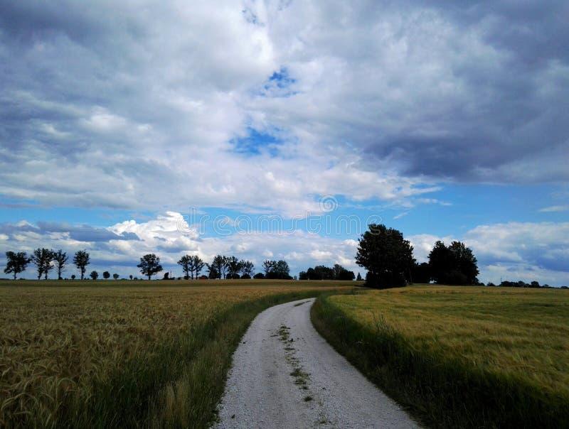 Route au ciel photos libres de droits