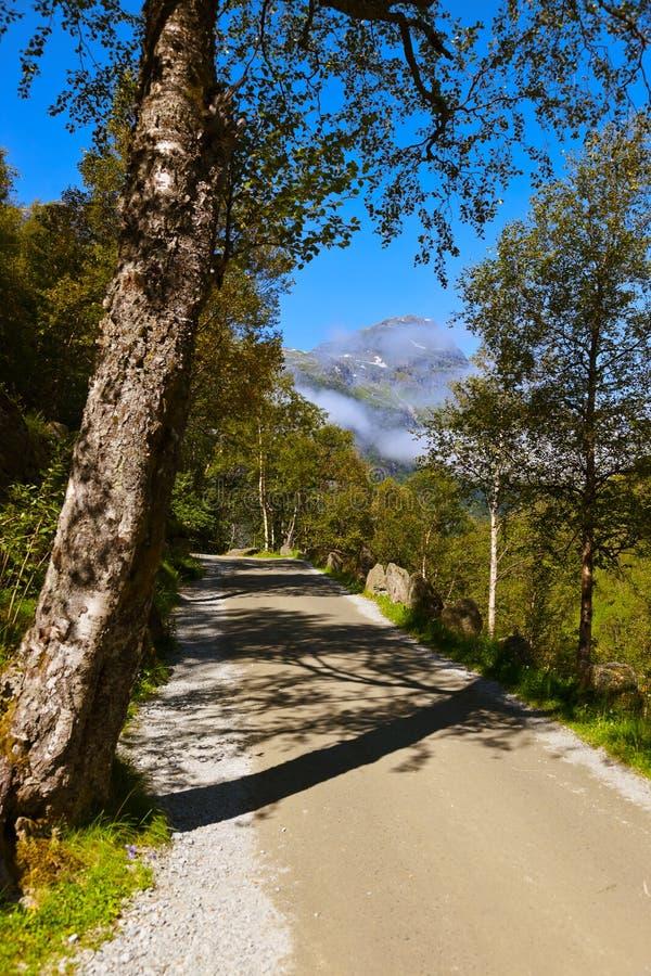 Route au glacier de Briksdal - Norvège image stock