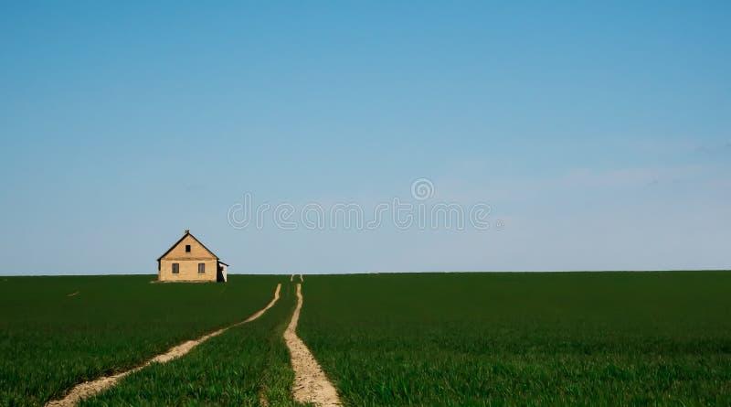 Route au milieu d'un champ vert photos stock