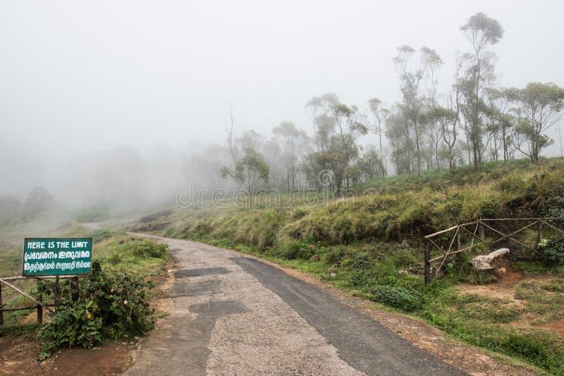 Route au parc national d'Eravikulam image stock