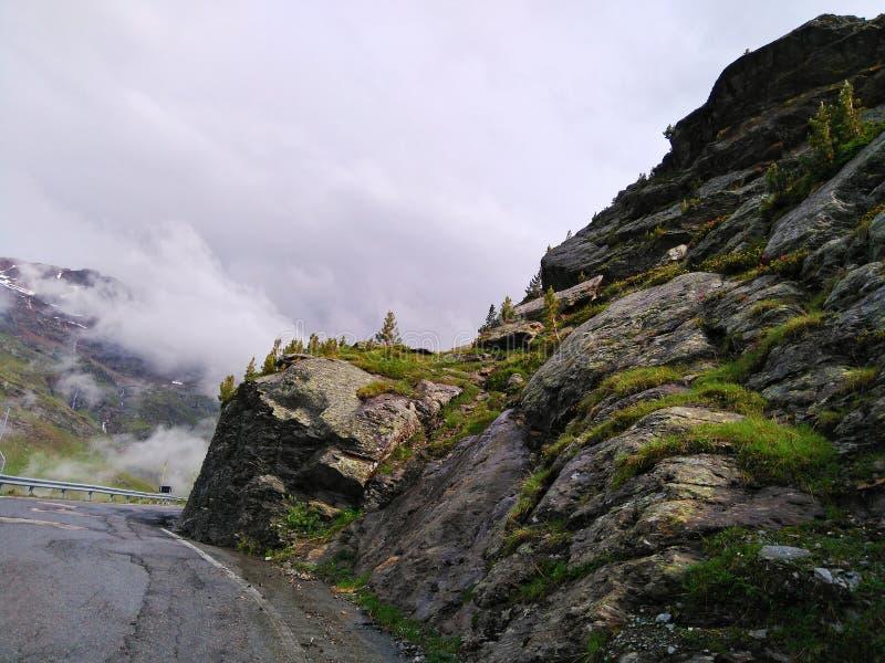 Route au passage de Gavia photo stock