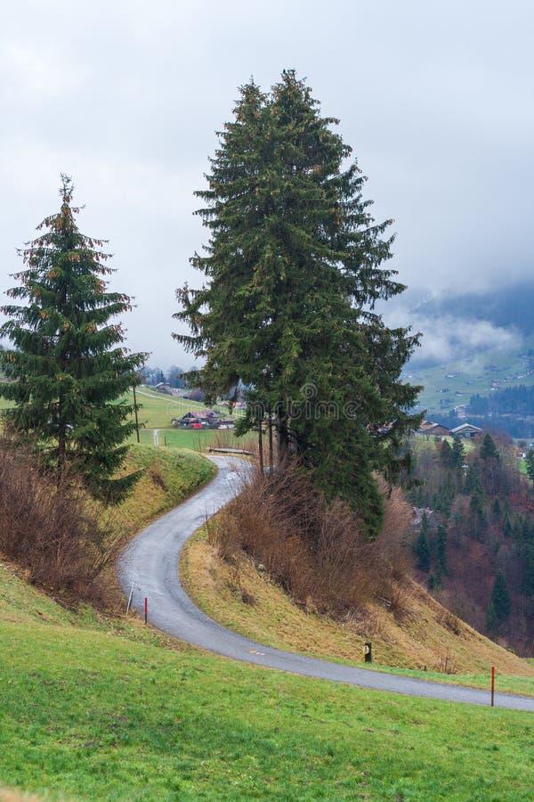 Route avec la vue des montagnes en Suisse image libre de droits