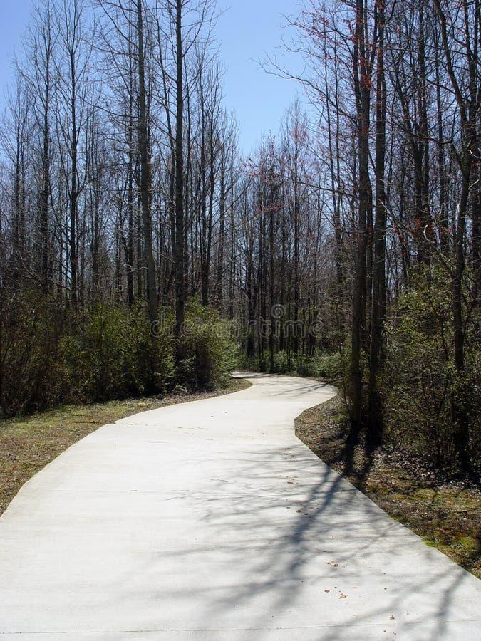 Download Route blanche image stock. Image du incurvé, bleu, arbres - 91751