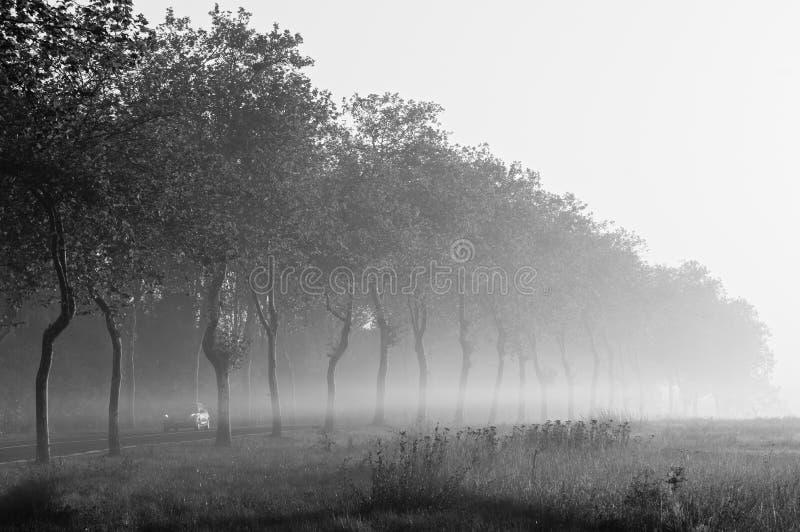 Route brumeuse dans ÃŽle De France photos stock