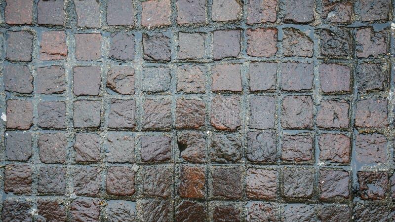Route carrée humide de pierre de pavé, texture photographiée d'en haut images stock