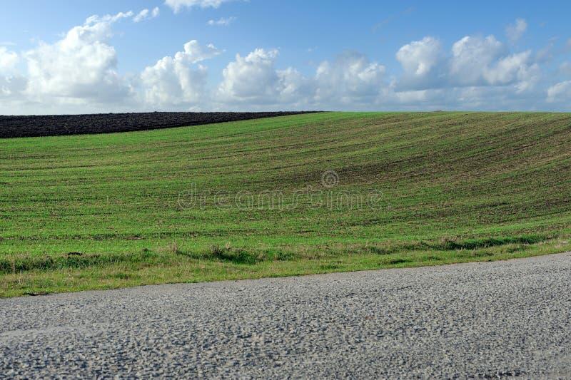 Route, champ vert et ciel bleu photographie stock