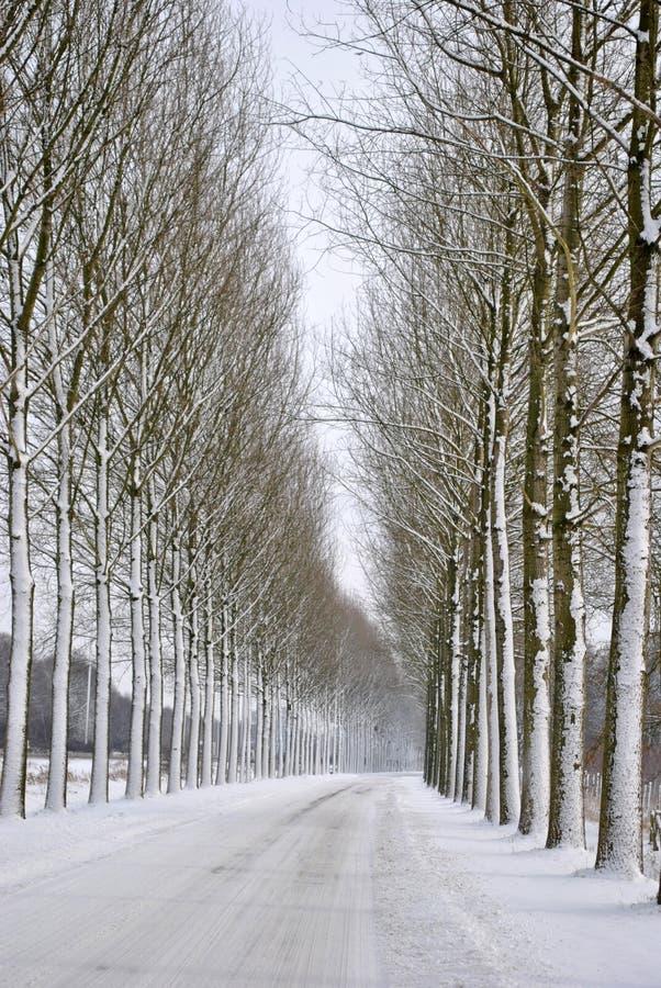 Route complètement de neige photo stock