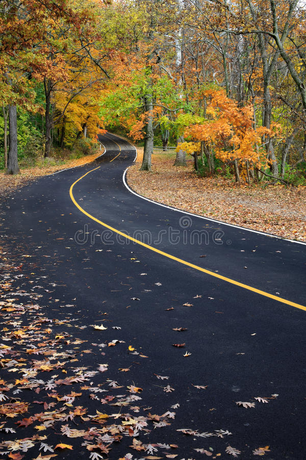 Route Curvy d'asphalte photos libres de droits