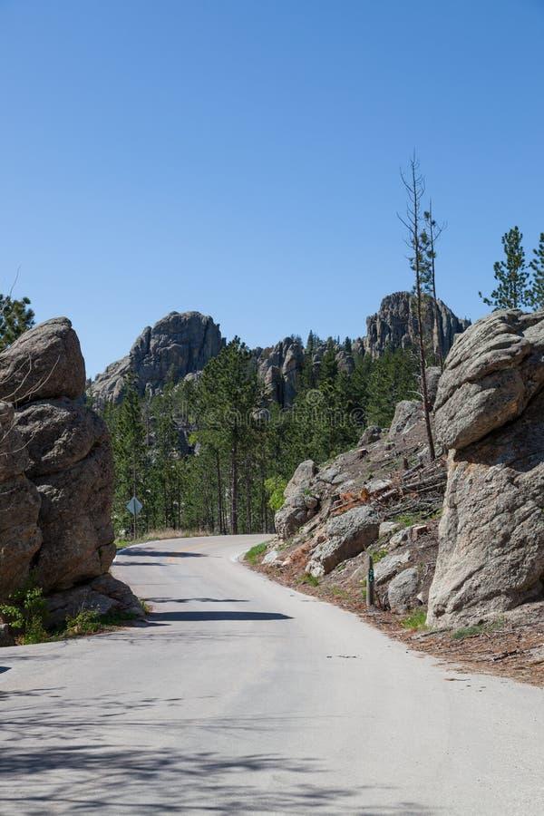 Route d'aiguilles en Custer State Park image libre de droits