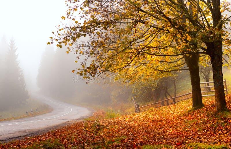 Route d'automne Autumn Landscape photo libre de droits