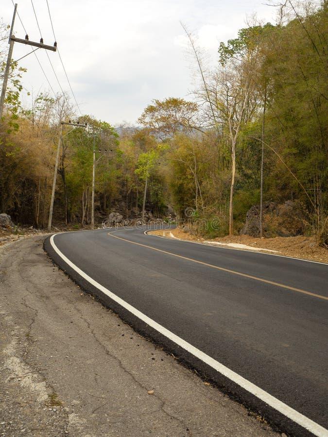 Route d'enroulement dans une forêt verte luxuriante photo libre de droits