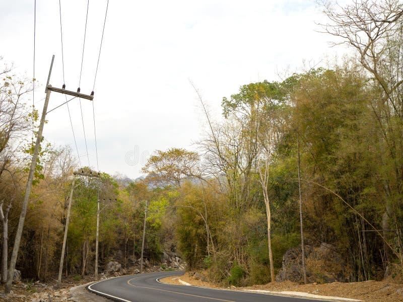 Route d'enroulement dans une forêt verte luxuriante image libre de droits