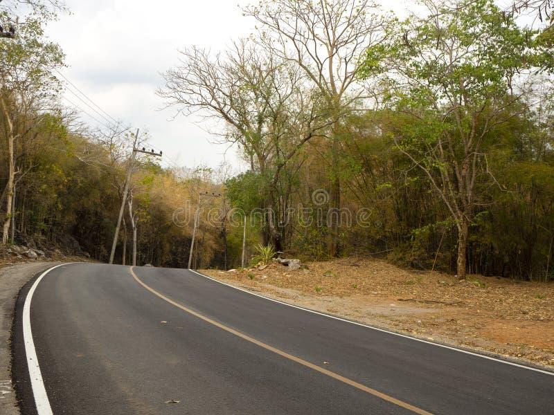 Route d'enroulement dans une forêt verte luxuriante photos stock