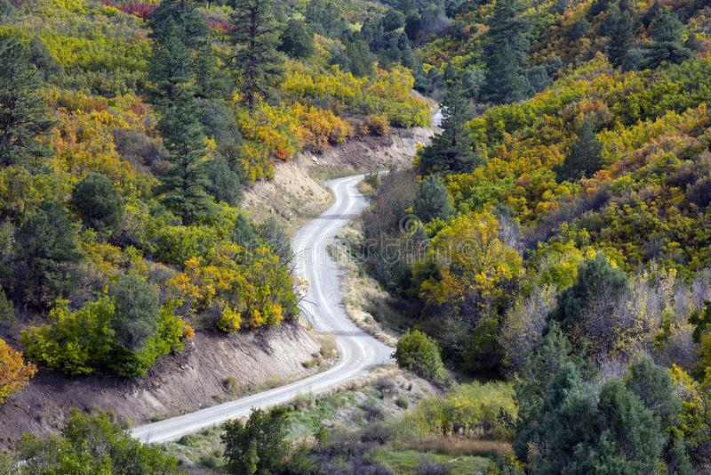 Route d'enroulement par la couleur d'Autumn Fall des arbres de conifère et des trembles et des buissons de chêne près de Ridgway  image libre de droits