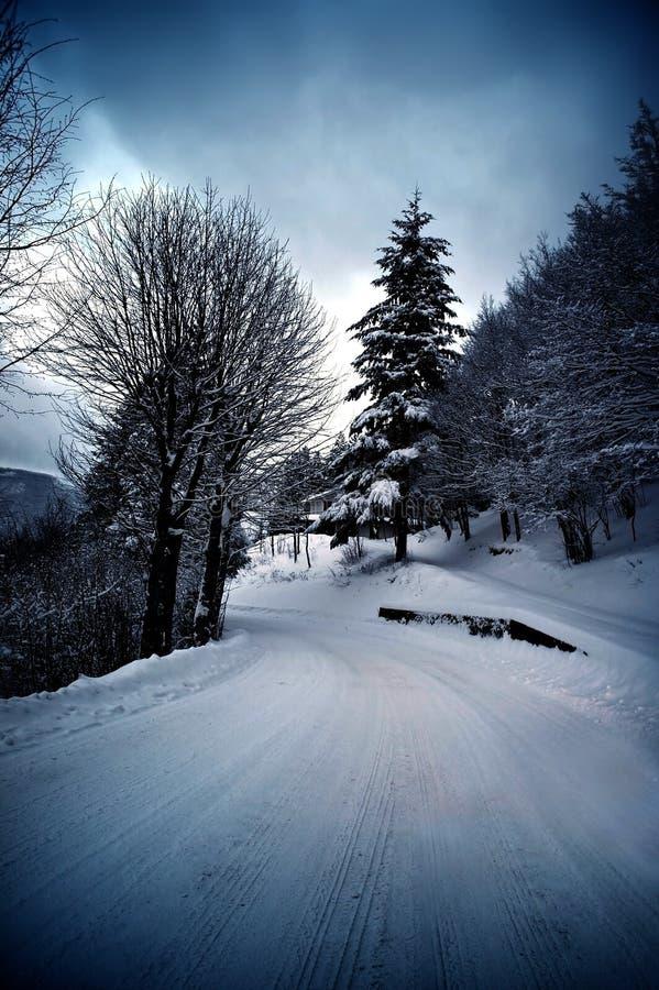 Download Route d'hiver image stock. Image du forêt, italie, bois - 33394549