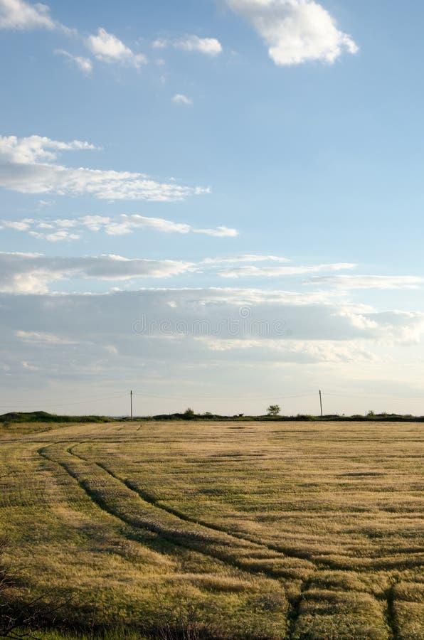 Route dans l'herbe image libre de droits