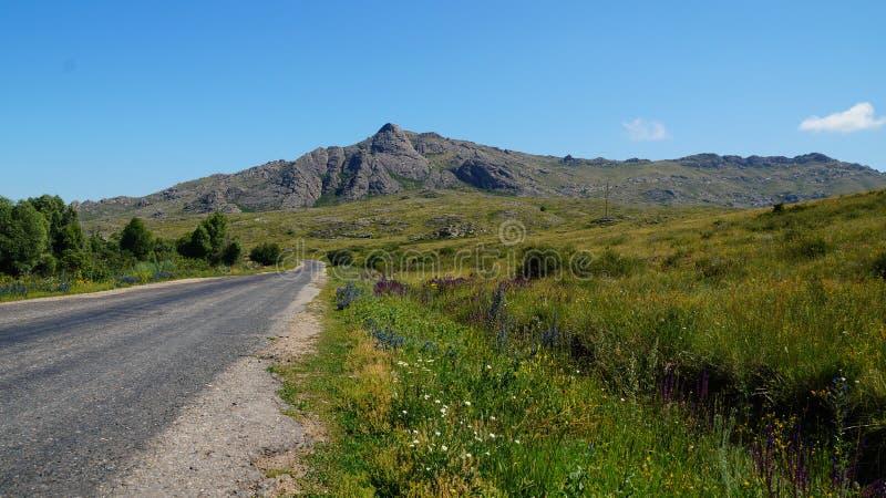 Route dans la prairie image stock