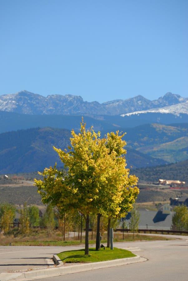 Route dans le Colorado photographie stock libre de droits