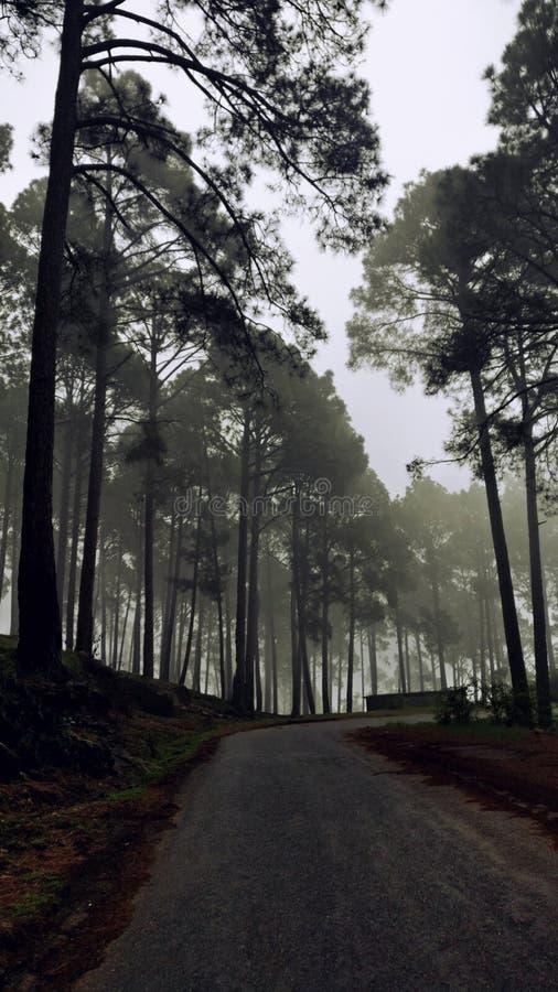 Route dans les nuages image stock