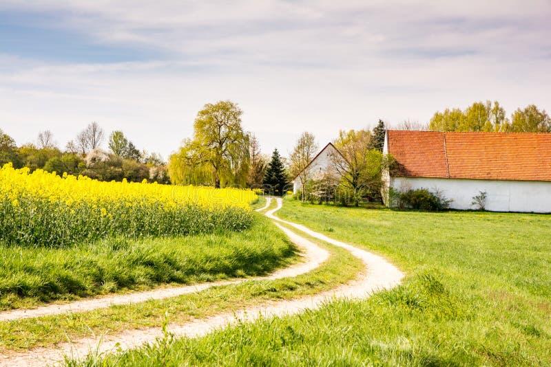 Route de campagne à une ferme à un champ de viol photographie stock libre de droits