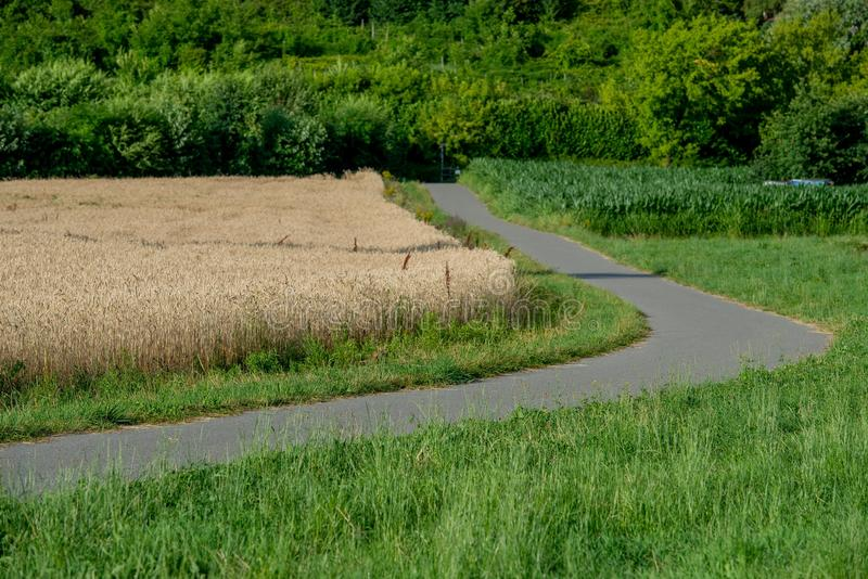 Route de campagne photo stock