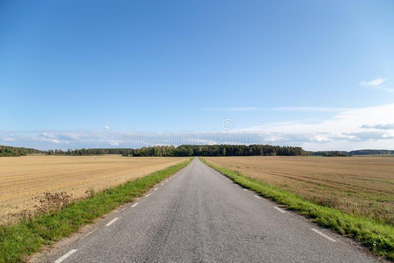 Route de campagne, ciel bleu photos libres de droits