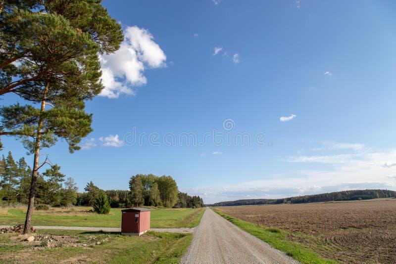 Route de campagne, ciel bleu photographie stock libre de droits