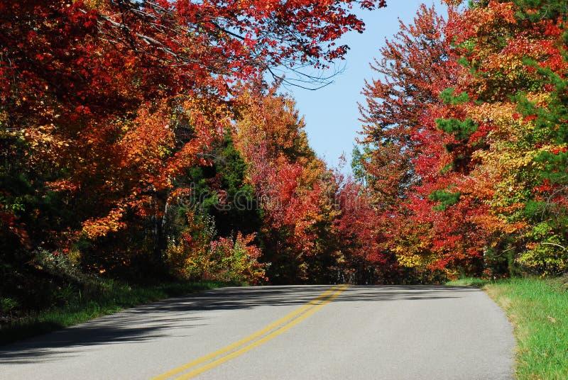 Route de campagne d'automne photos libres de droits