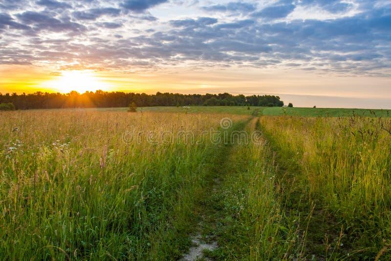 Route de campagne dans le domaine rural de pré sous le ciel dans le lever de soleil images stock