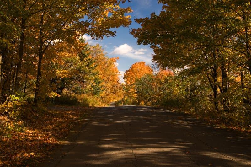Route de campagne en automne photo stock