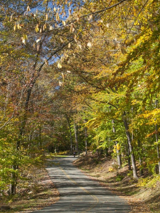 Route de campagne en automne image stock