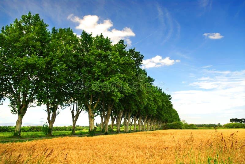 Route de campagne française images libres de droits