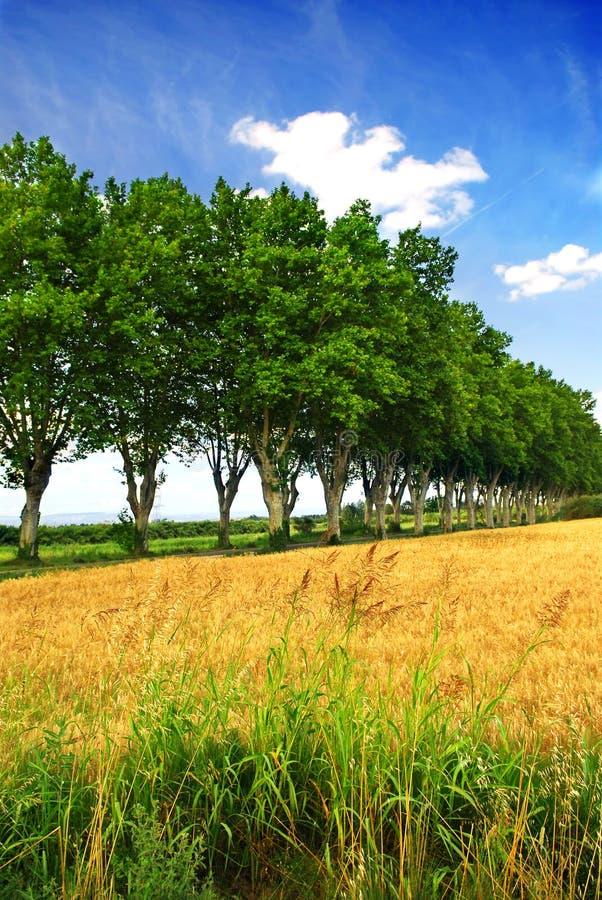 Route de campagne française images stock