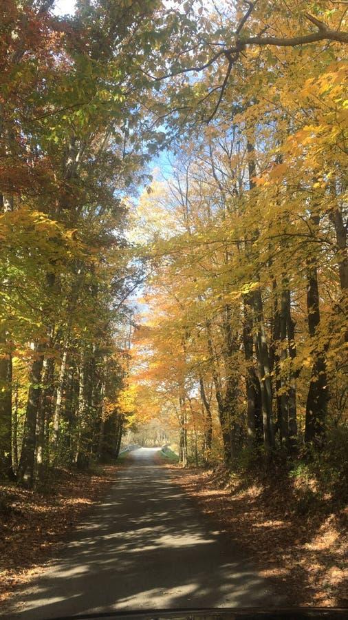 Route de campagne de jour d'automne image stock