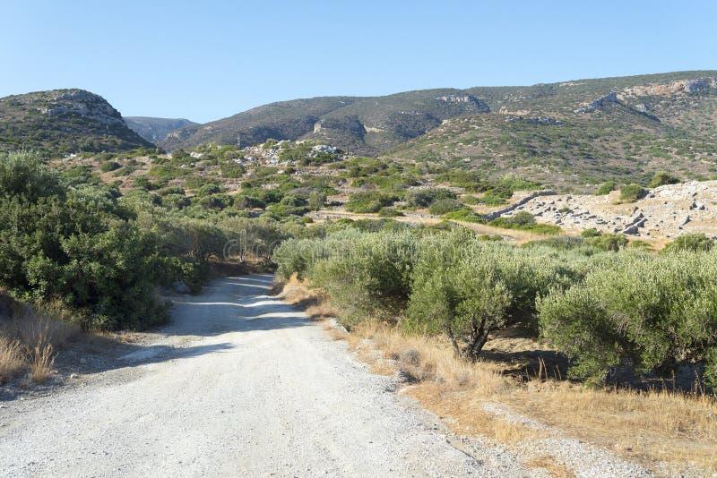 Route de campagne le long des arbres aux montagnes images libres de droits