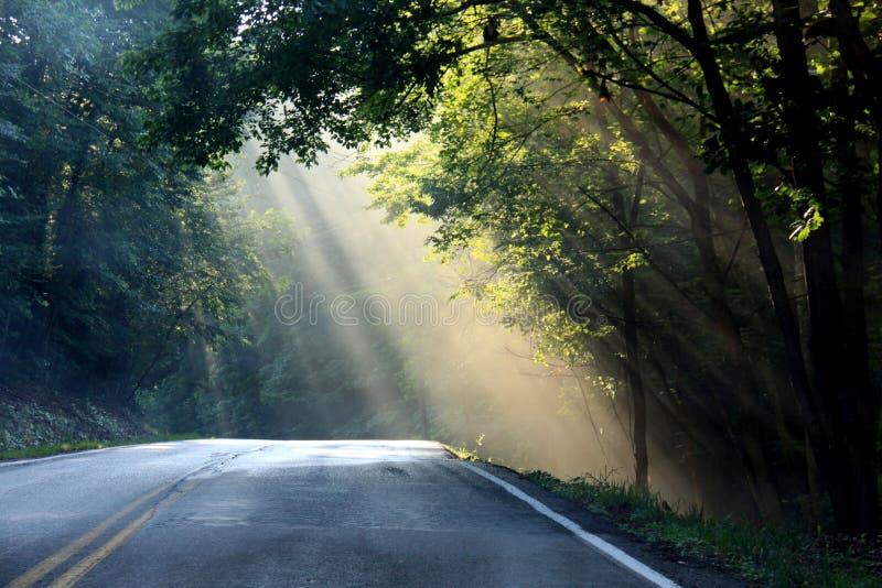 Route de campagne Sunlit photographie stock