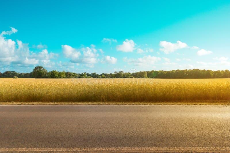 Route de campagne vide avec le champ et le fond rural de paysage un jour ensoleillé photographie stock libre de droits