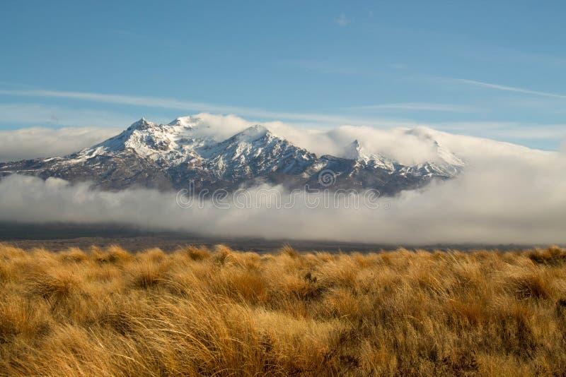 Route de désert de montagnes de Tongariro grande photo libre de droits