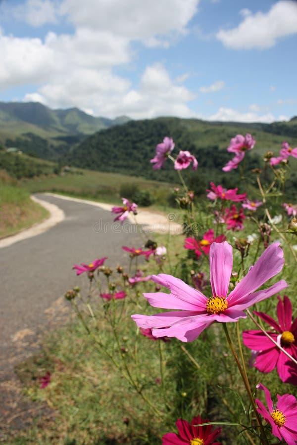 Route de Drakensburg photos libres de droits