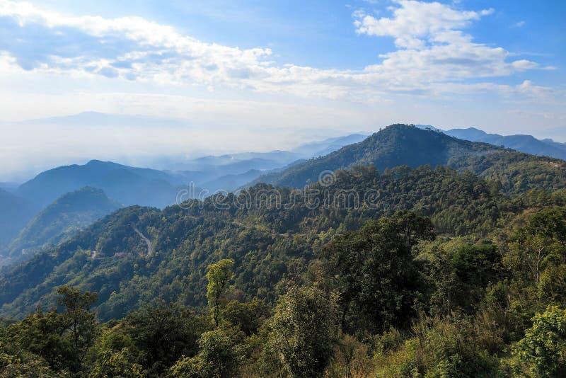 Route de forêt tropicale et de campagne avec le brouillard, le nuage et le ciel bleu images libres de droits